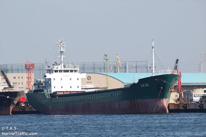 Vụ chìm tàu hàng trên vịnh Tokyo: Một thủy thủ Việt được cứu sống - Ảnh 1