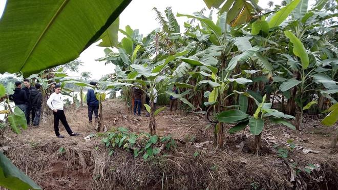 Liên tiếp phát hiện thi thể trên sông Thái Bình: Công an khẳng định chỉ có 3 nạn nhân - Ảnh 1