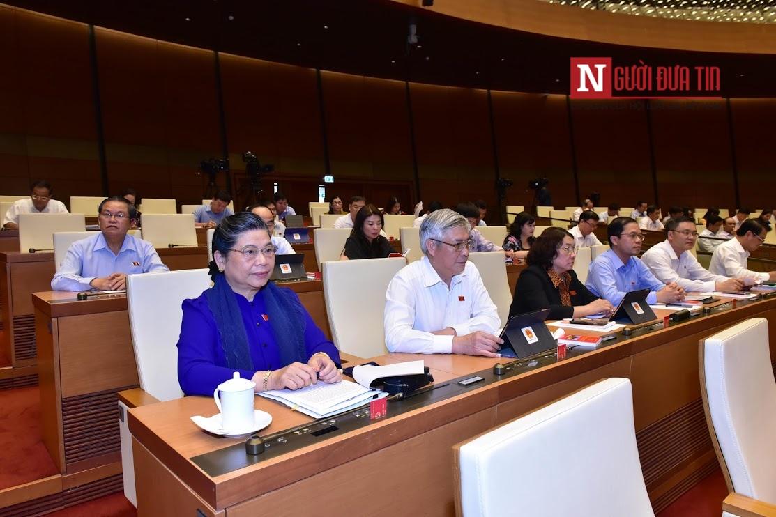 Hôm nay (24/5), Quốc hội dự kiến tiếp tục thảo luận về luật Quản lý thuế và luật Kiến trúc - Ảnh 1