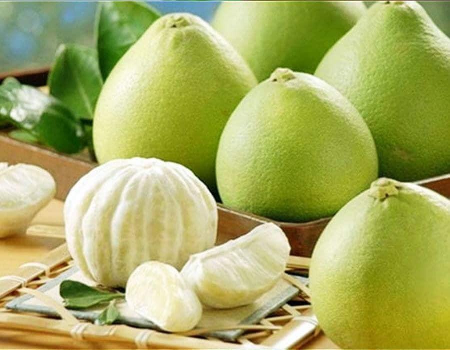 Hương thơm dịu, vị ngọt thanh đặc biệt của quả thanh trà xứ Huế - Ảnh 1