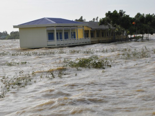 Lũ đầu nguồn sông Cửu Long đang lên, Nam bộ nguy cơ ngập úng - Ảnh 1
