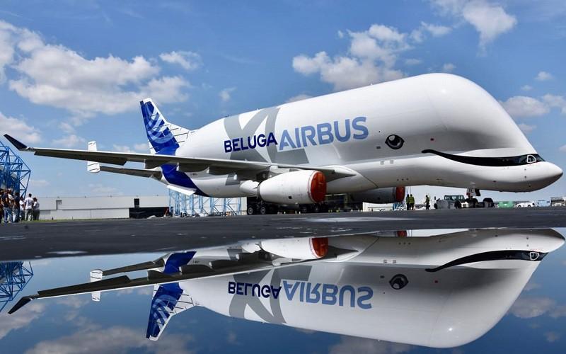 """""""Cá voi bay"""" Beluga XL của """"gã khổng lồ"""" Airbus chính thức được đưa vào hoạt động  - Ảnh 2"""