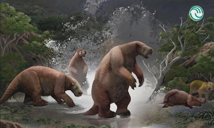 Phát hiện hóa thạch 'người tuyết Nam Mỹ' có móng vuốt dài tới 2 mét - Ảnh 1
