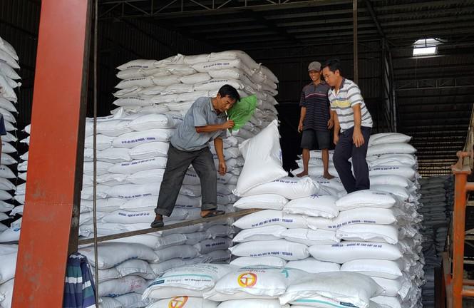 """Mở tờ khai xuất khẩu gạo lúc nửa đêm khiến doanh nghiệp """"chưng hửng"""": Hải quan nói gì? - Ảnh 1"""