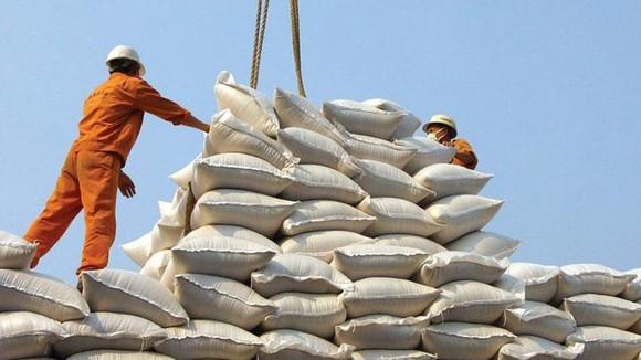 Vụ mở tờ khai xuất khẩu gạo lúc nửa đêm: Lộ dấu hiệu bất thường - Ảnh 1