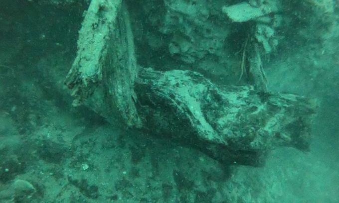 Cơn bão quét qua vùng vịnh làm phát lộ khu rừng 60.000 năm ẩn mình dưới đáy biển - Ảnh 1
