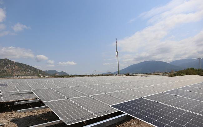 Bà Rịa - Vũng Tàu chuẩn bị vận hành 2 dự án điện mặt trời 1.500 tỷ đồng  - Ảnh 1