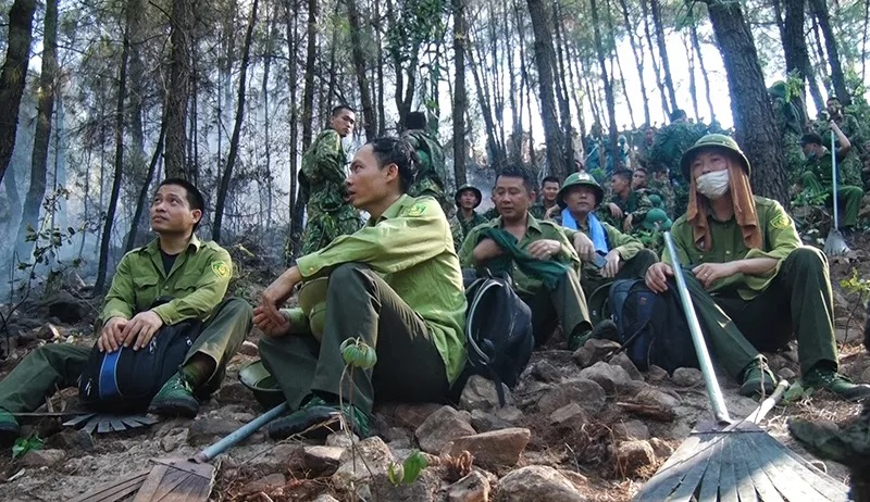 Cháy rừng ở Diễn Châu: Nỗ lực dập lửa suốt đêm - Ảnh 1