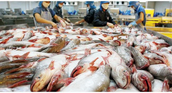 Cổ phiếu 'vua cá' Hùng Vương chính thức rời sàn chứng khoán  - Ảnh 1