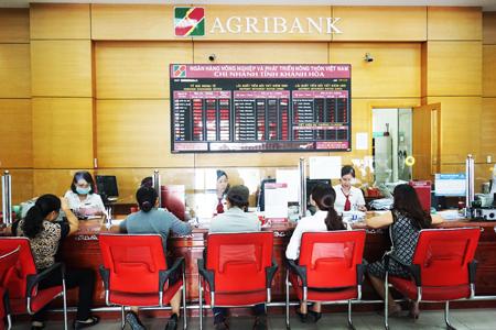 Nộp thuế vào ngân sách nhà nước qua hệ thống Agribank - Ảnh 1