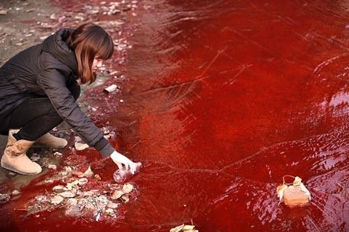 Những khoảnh khắc về cảnh thiếu nước ám ảnh hàng triệu người - Ảnh 2