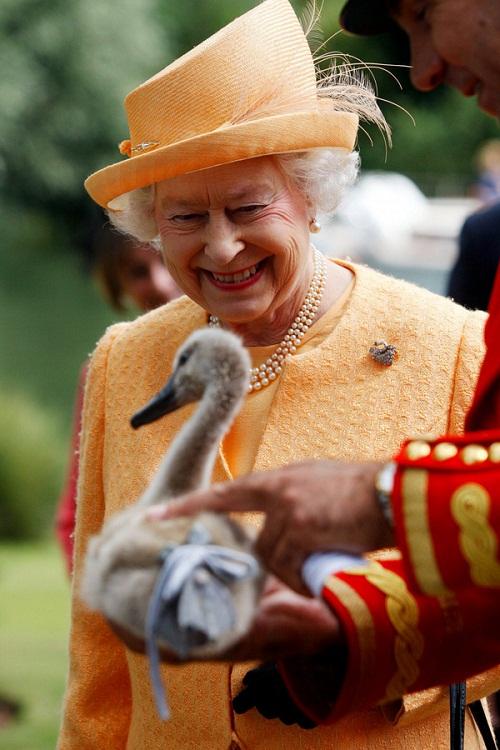 Tham gia giao thông suốt 70 năm, đây là người phụ nữ duy nhất ở Anh không có giấy phép lái xe - Ảnh 4