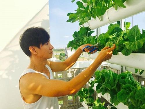 Ngắm vườn rau sạch trong biệt thự triệu đô của các sao Việt - Ảnh 2