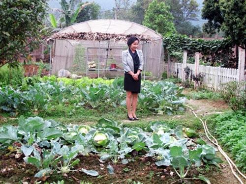 Ngắm vườn rau sạch trong biệt thự triệu đô của các sao Việt - Ảnh 8
