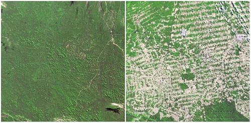 Loạt ảnh minh chứng Trái Đất đang có những biến đổi đến khó tin trong vòng 100 năm - Ảnh 12