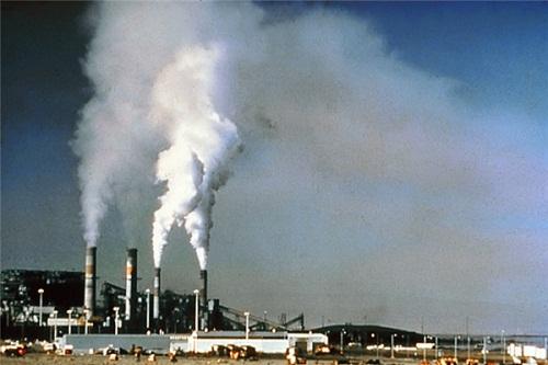 Sợ hãi với những lời tiên đoán về viễn cảnh của Trái Đất vào năm 2050 - Ảnh 4