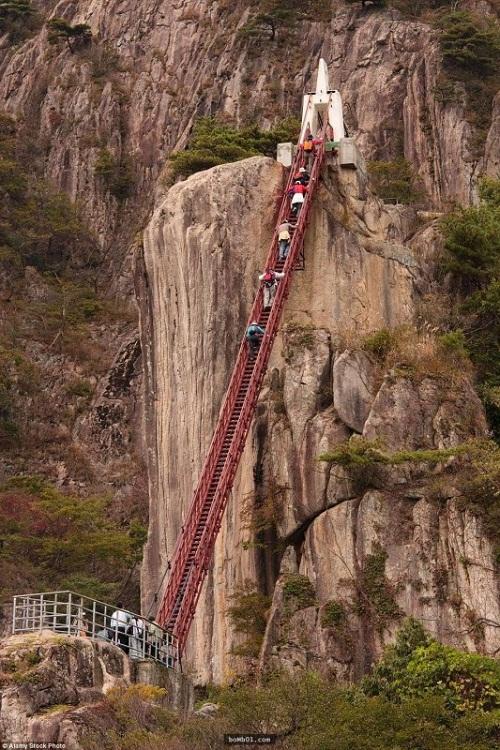 """Những cây cầu nguy hiểm nhất hành tinh khiến bạn phải """"chùn bước"""" - Ảnh 10"""