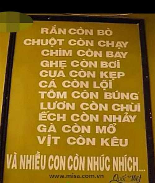 """""""Cười tan mỡ bụng"""" với loạt bảng hiệu """"kỳ cục"""" mà chỉ Việt Nam mới có - Ảnh 14"""