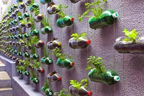 Bỏ túi các cách tái chế chai nhựa bỏ đi thành vật dụng hữu ích - Ảnh 2