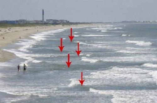 Nằm lòng những điều này để tắm biển không còn nguy hiểm - Ảnh 2