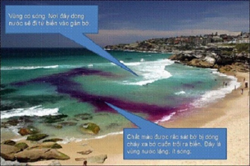 Nằm lòng những điều này để tắm biển không còn nguy hiểm - Ảnh 3