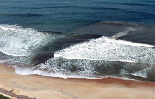 Nằm lòng những điều này để tắm biển không còn nguy hiểm - Ảnh 5