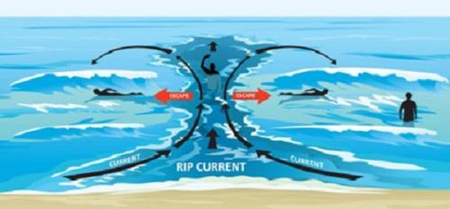 Nằm lòng những điều này để tắm biển không còn nguy hiểm - Ảnh 6