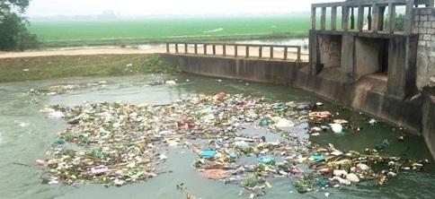 """Xác động vật vứt đầy sông hồ: Dân """"nếm"""" đủ hậu quả - Ảnh 2"""