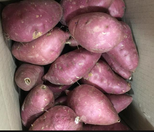 Giá cao tới 400 nghìn đồng/kg,khoai lang Hàn Quốc vẫn được chị em săn đón - Ảnh 3