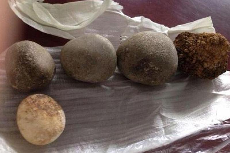 Săn tìm mua sỏi mật giá hơn 300 triệu đồng/kg - Ảnh 2