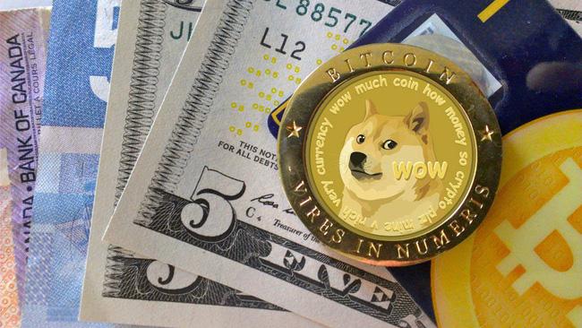 Dogecoin: Đồng tiền ảo lấy cảm hứng từ một chú chó đã tăng giá 800% - Ảnh 1