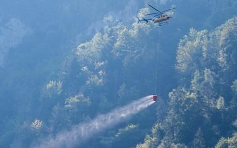 Thuỵ Sĩ: Gia đình 4 người thiệt mạng trọng vụ rơi máy bay  - Ảnh 1