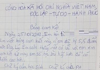 Sở GD&ĐT TP.HCM lên tiếng về vụ học sinh lớp 6 viết cam kết vì điểm thấp - Ảnh 1