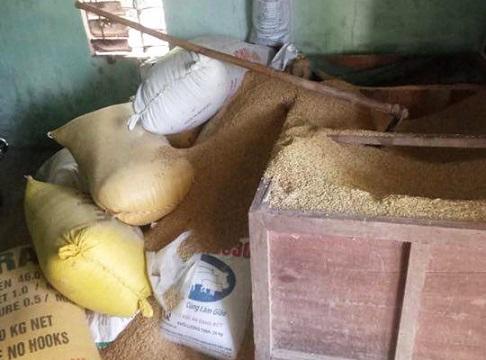 Vụ mất 50 cây vàng trong kho lúa: Thủ phạm vẫn nhởn nhơ  - Ảnh 1