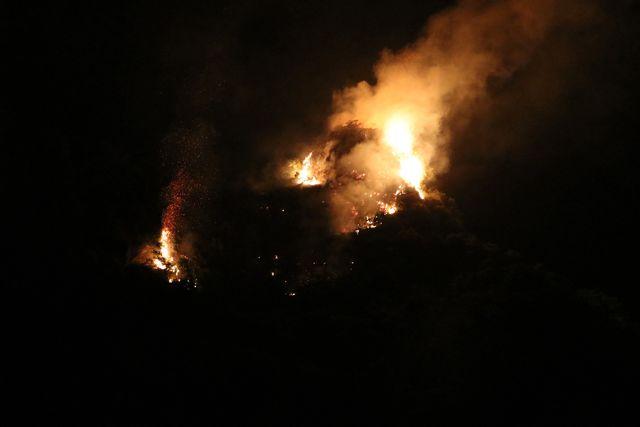 Đám cháy thiêu rụi nhiều ha rừng trong quần thể danh thắng Tràng An - Ảnh 1