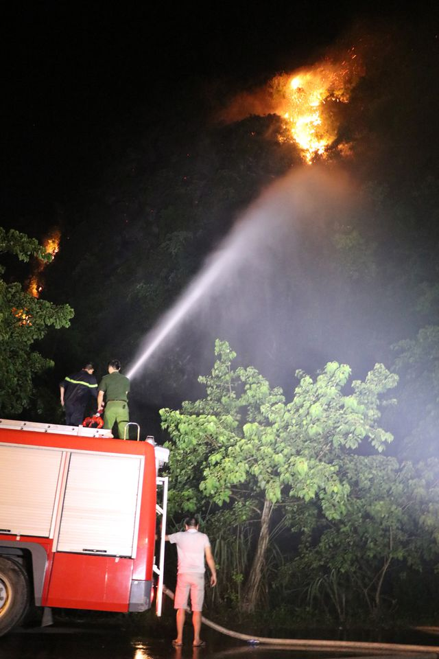 Đám cháy thiêu rụi nhiều ha rừng trong quần thể danh thắng Tràng An - Ảnh 2