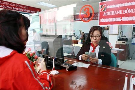 Tổng giám đốc Agribank: 'Chúng tôi không làm trái quy định' - Ảnh 2