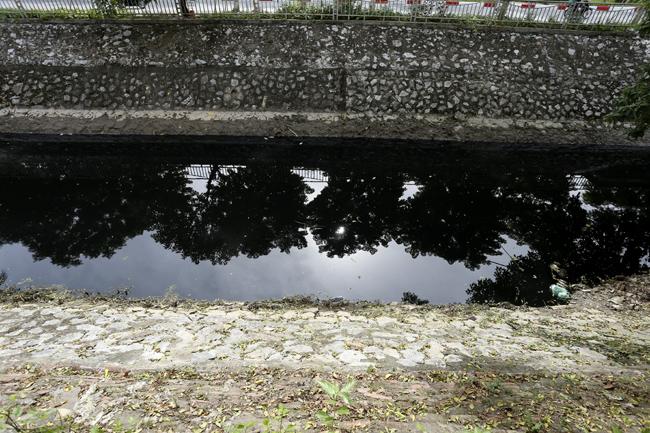 Nước sông Tô Lịch lại đen kịt, cá chết dày đặc  - Ảnh 2