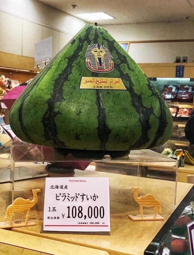"""""""Choáng váng"""" dưa hấu hình kim tự tháp có giá gần 30 triệu đồng - Ảnh 1"""