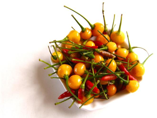 Giới nhà giàu mạnh tay mua loại quả dại có giá hơn nửa tỷ mỗi kg - Ảnh 3