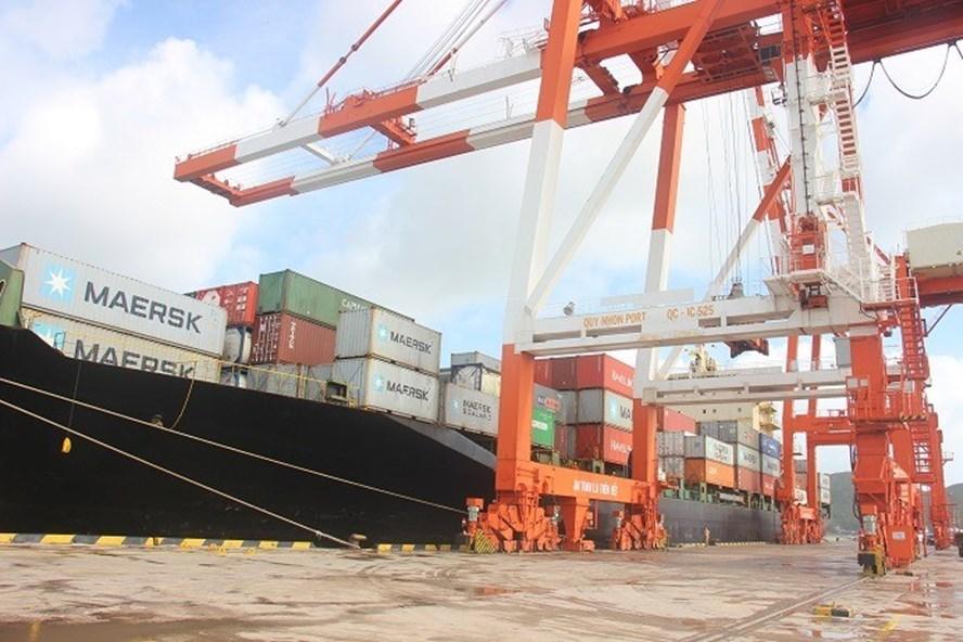 Bình Định: Khiển trách Phó Tổng Giám đốc cảng Quy Nhơn - Ảnh 1