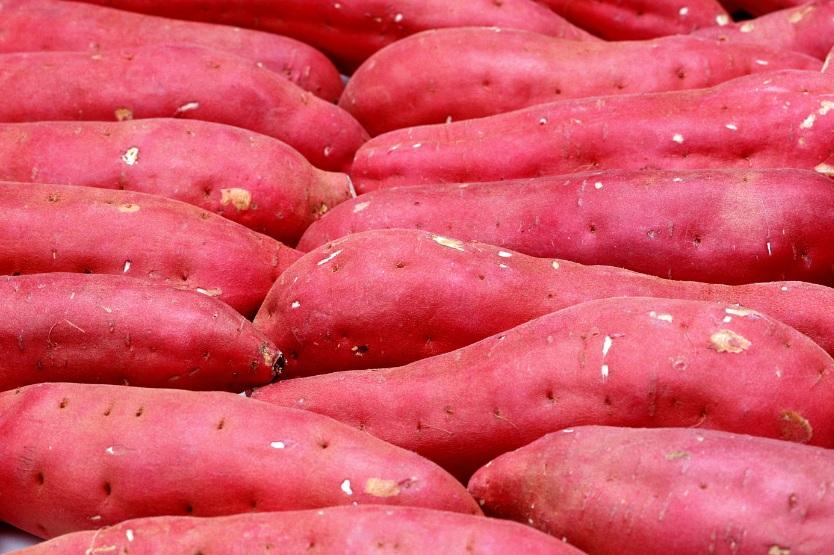 Tổng hợp các cách chữa táo bón bằng khoai lang vô cùng hiệu quả - Ảnh 1