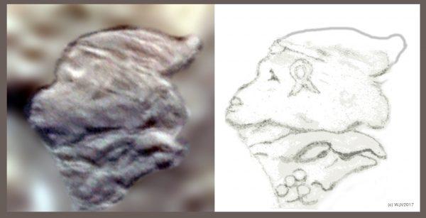 Phát hiện bằng chứng nền văn minh cổ đại từng xuất hiện tại Nam Cực - Ảnh 2