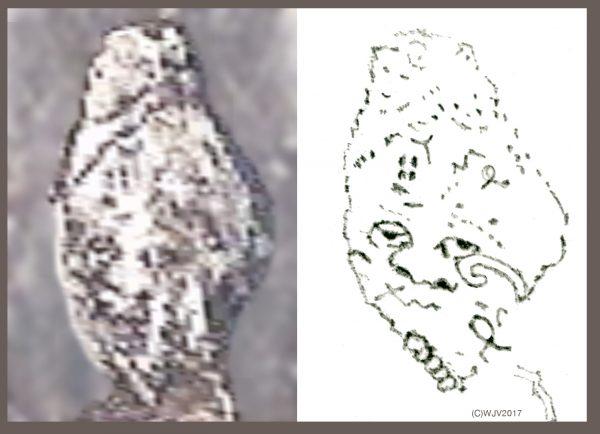 Phát hiện bằng chứng nền văn minh cổ đại từng xuất hiện tại Nam Cực - Ảnh 5