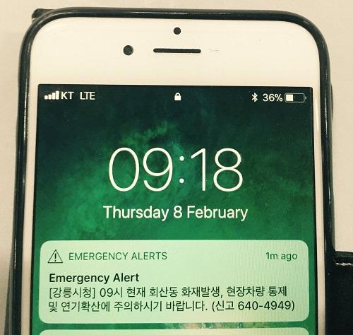 Hàn Quốc: Khán giả dự Olympic phát hoảng vì thông báo khẩn  - Ảnh 1