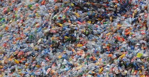 Phát hiện enzym 'ăn nhựa' mới có thể làm giảm ô nhiễm môi trường - Ảnh 2