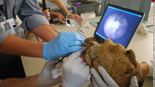 FBI giải mã thành công bí ẩn xác ướp 4.000 năm tuổi - Ảnh 3