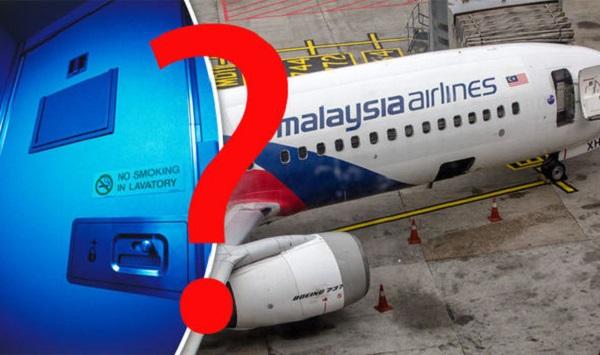 Tai nạn của chuyến bay MH370 là một vụ mưu sát tập thể của cơ trưởng? - Ảnh 1