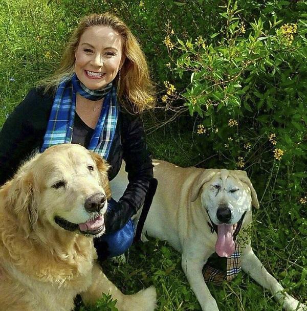 """Chú chó bị bỏ rơi vì """"xấu ma chê quỷ hờn"""" hồi sinh sau khi được nhận nuôi - Ảnh 7"""