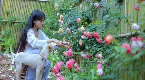Về quê nấu ăn, làm nông, cựu DJ Lý Tử Thất trở thành triệu phú ở tuổi 29 - Ảnh 3